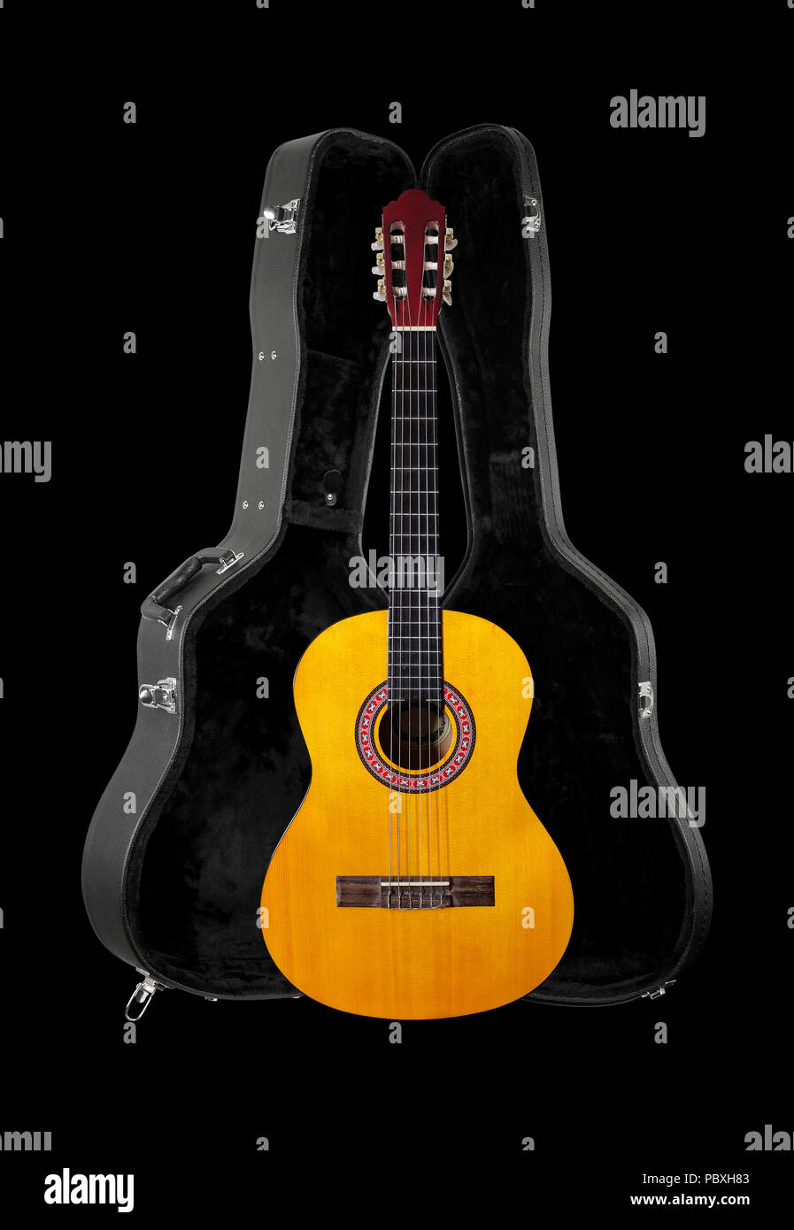 Musical Instrument Front View Classic Acoustic Guitar In Hard Case