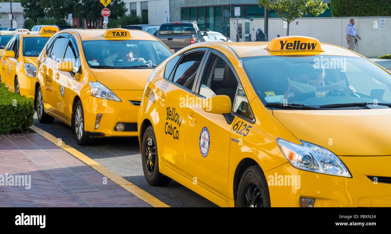 Yellow Taxis in Los Angeles, LA, California, CA, USA, the Yellow Cab