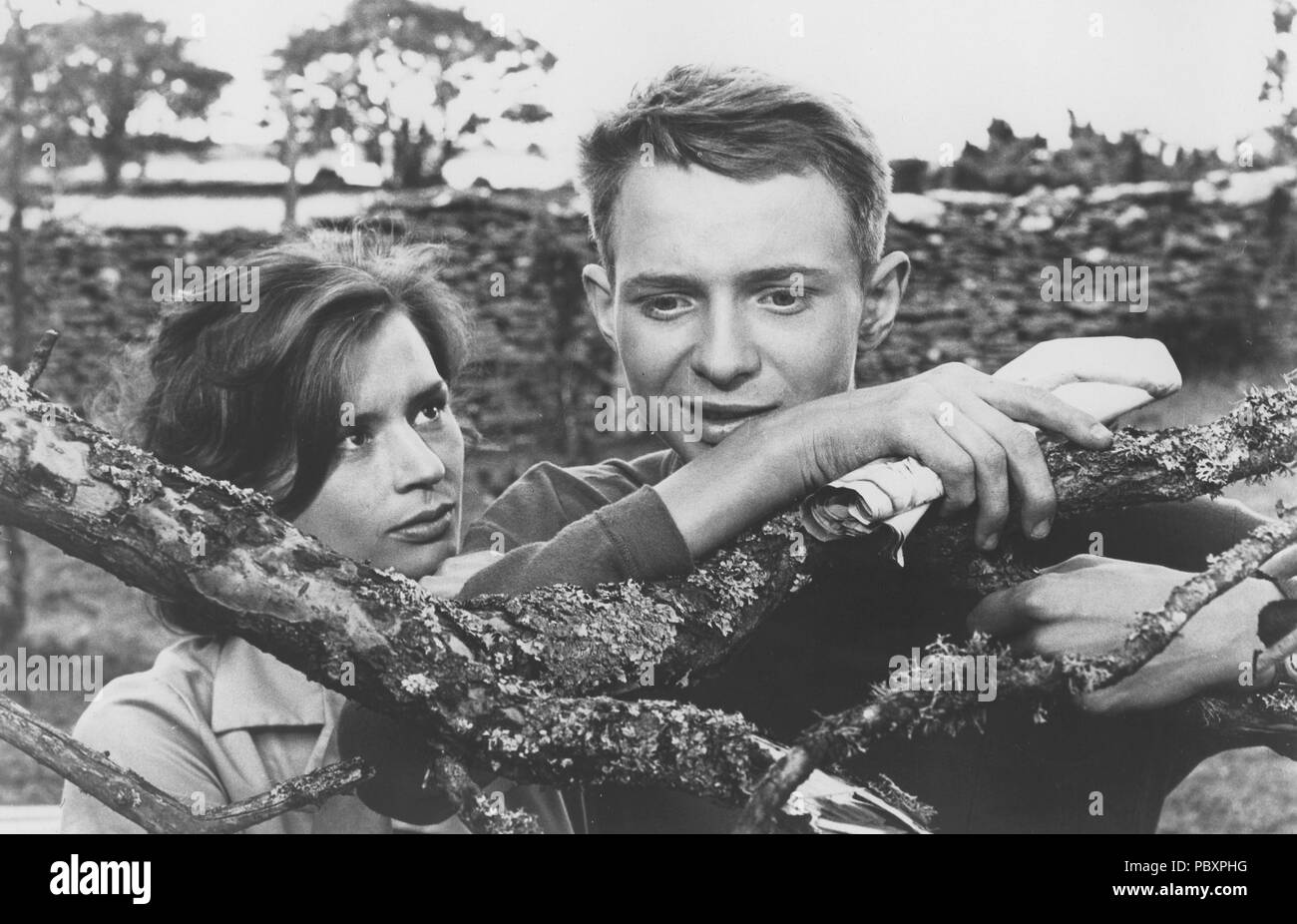 Through a Glass Darkly. Swedish film by Ingmar Bergman 1961 starring Harriet Andersson and Lars Passgård.  Ingmar Bergman. 1918-2007.  Swedish film director. - Stock Image