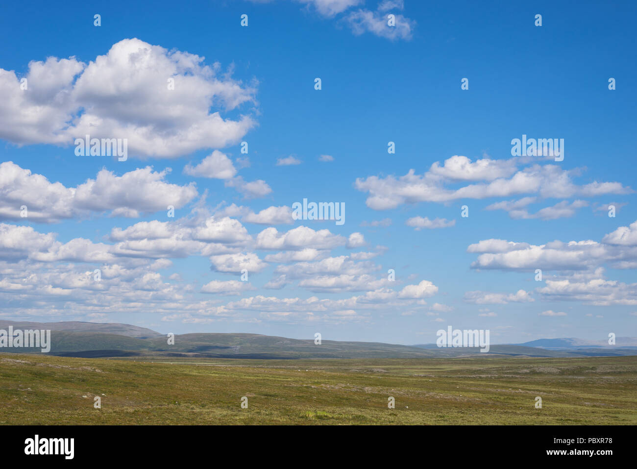Arctic mountain in summer, Finnmarksvidda in Finnmark, Norway. Wild nature with blue sky and white clouds. - Stock Image