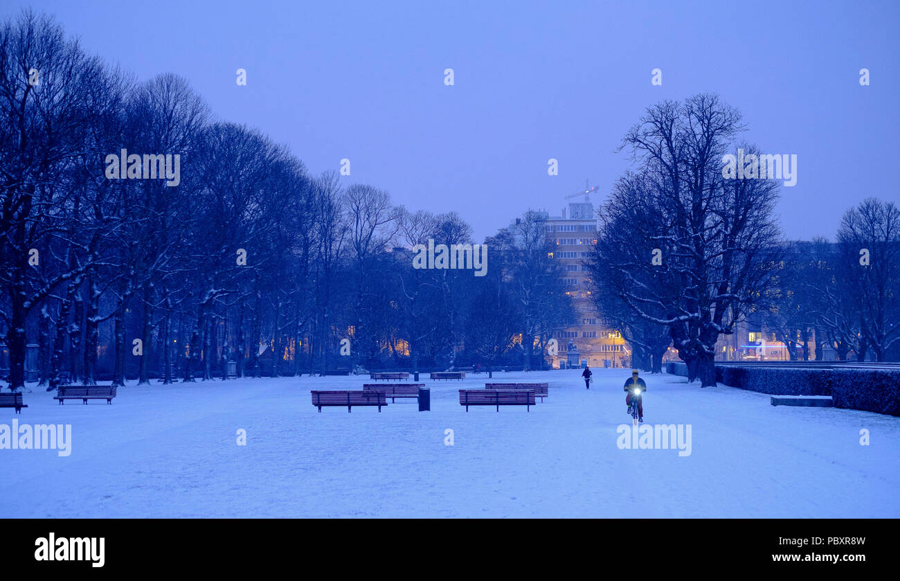 "Belgium: Brussels covered in snow. Someone riding a bike in the ""Parc du Cinquantenaire"" (French for Park of the Fiftieth Anniversary), or Jubelpark - Stock Image"