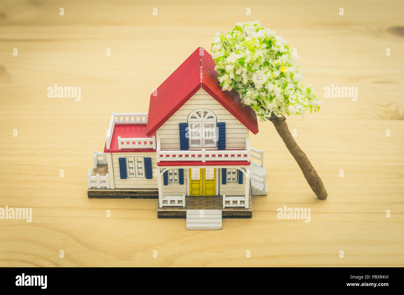Fallen Tree Home Insurance Concept. Falling trees on home or house for insurance concept or disaster category. Home insurance concept in  business cat Stock Photo