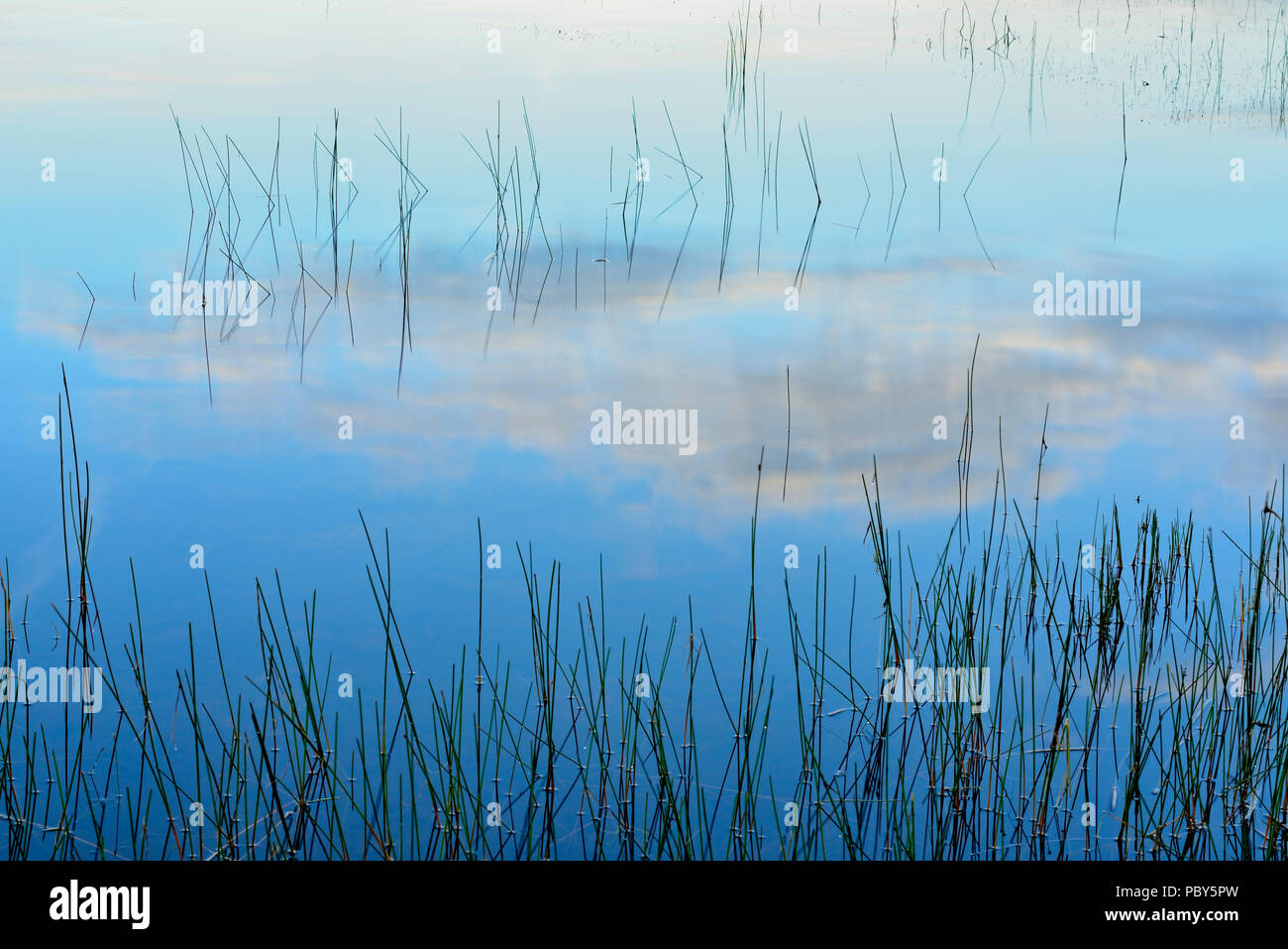 Morning sky reflected in the shallows of  Halfway Lake, Halfway Lake Provincial Park, Ontario, Canada Stock Photo
