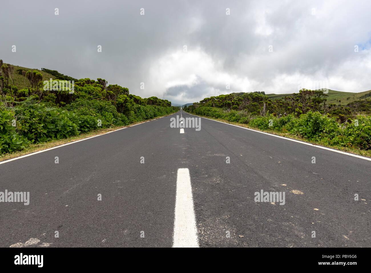 Straight EN3 longitudinal road northeast of Mount Pico, Pico island, Azores, Portugal - Stock Image