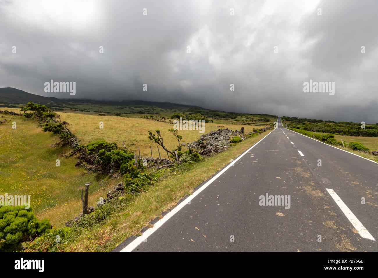 Landscape along  EN3 longitudinal road northeast of Mount Pico, Pico along , Pico island, Azores - Stock Image