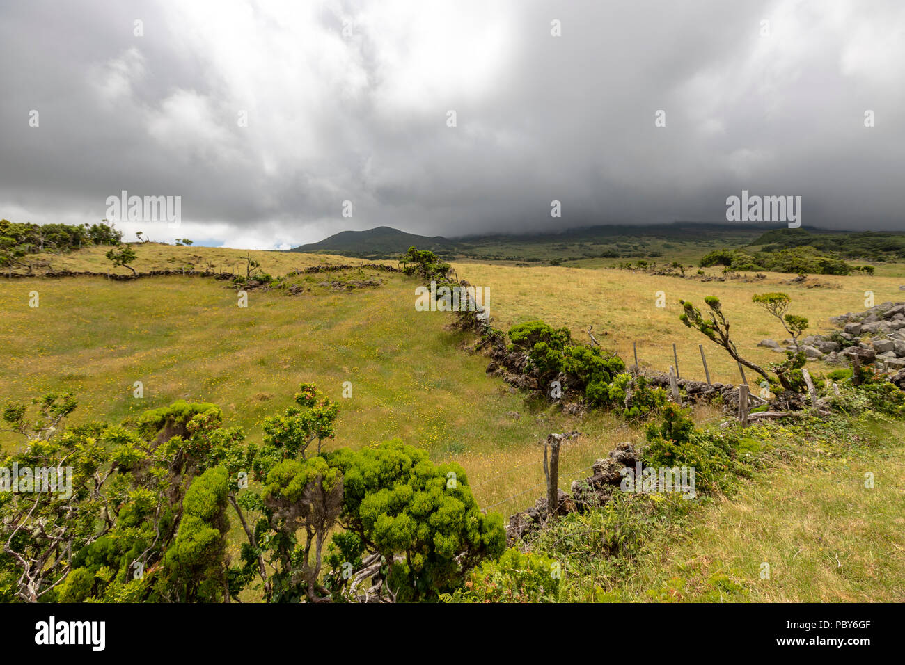 Landscape along  EN3 longitudinal road northeast of Mount Pico, Pico along , Pico island, Azores Stock Photo