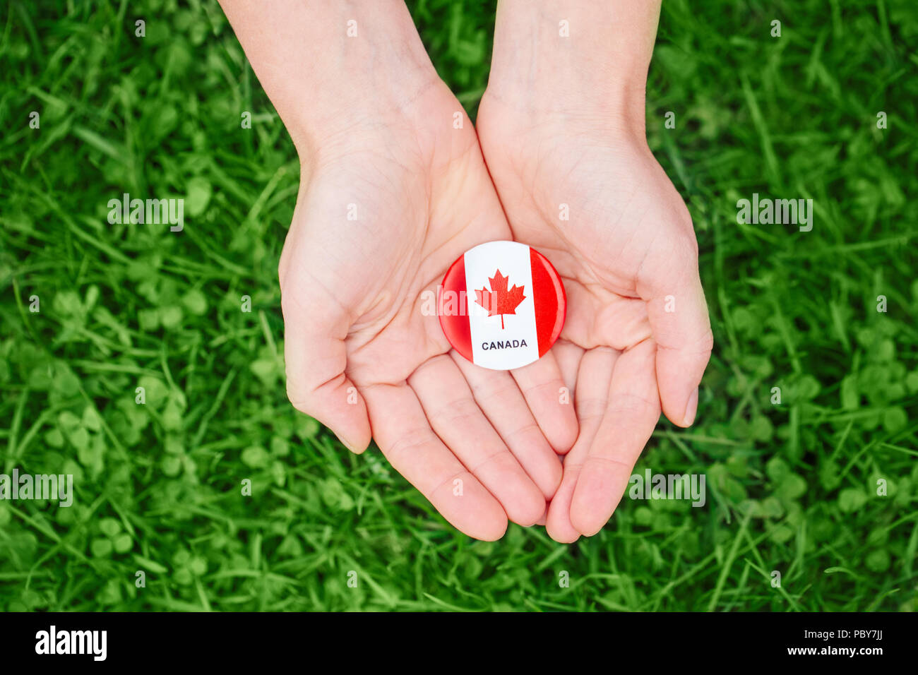 Macro closeup shot of hands palms holding round badge with red white canadian flag maple leaf on green grass forest nature background outside Canada D Stock Photo