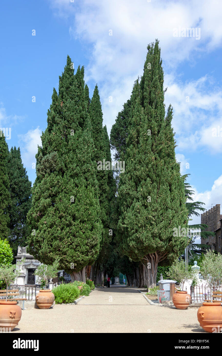 A spectacular alley of tall cypresses in the San Miniato al Monte cemetery (Florence - Tuscany - Italy). Une allée de cyprès à San Miniato al Monte. - Stock Image