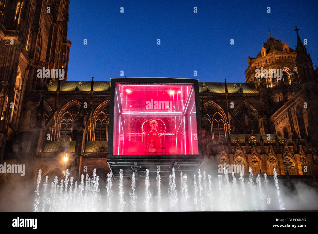 Strasbourg, 12.000-year-old mammoth skeleton suspended in display case, jet water fountain, illuminated cathedral, night, Alsace, France, Europe, - Stock Image
