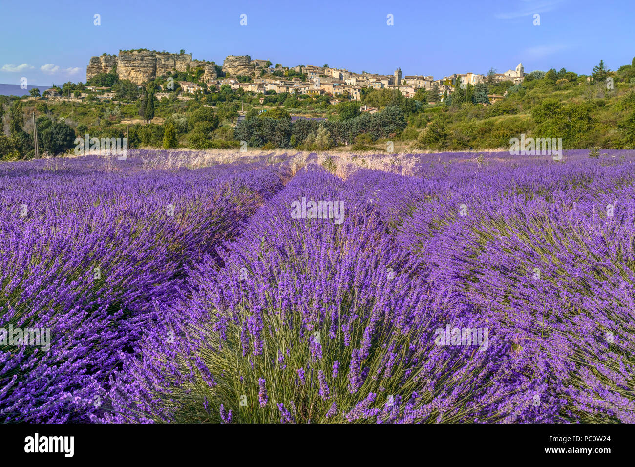 Saignon, Vaucluse; Provence, France, Europe - Stock Image