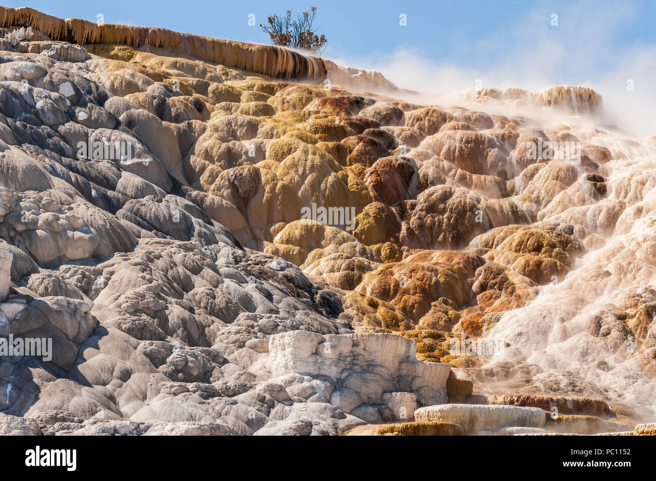Mammoth Hot Springs in winter at Yellowstone National Park Stock