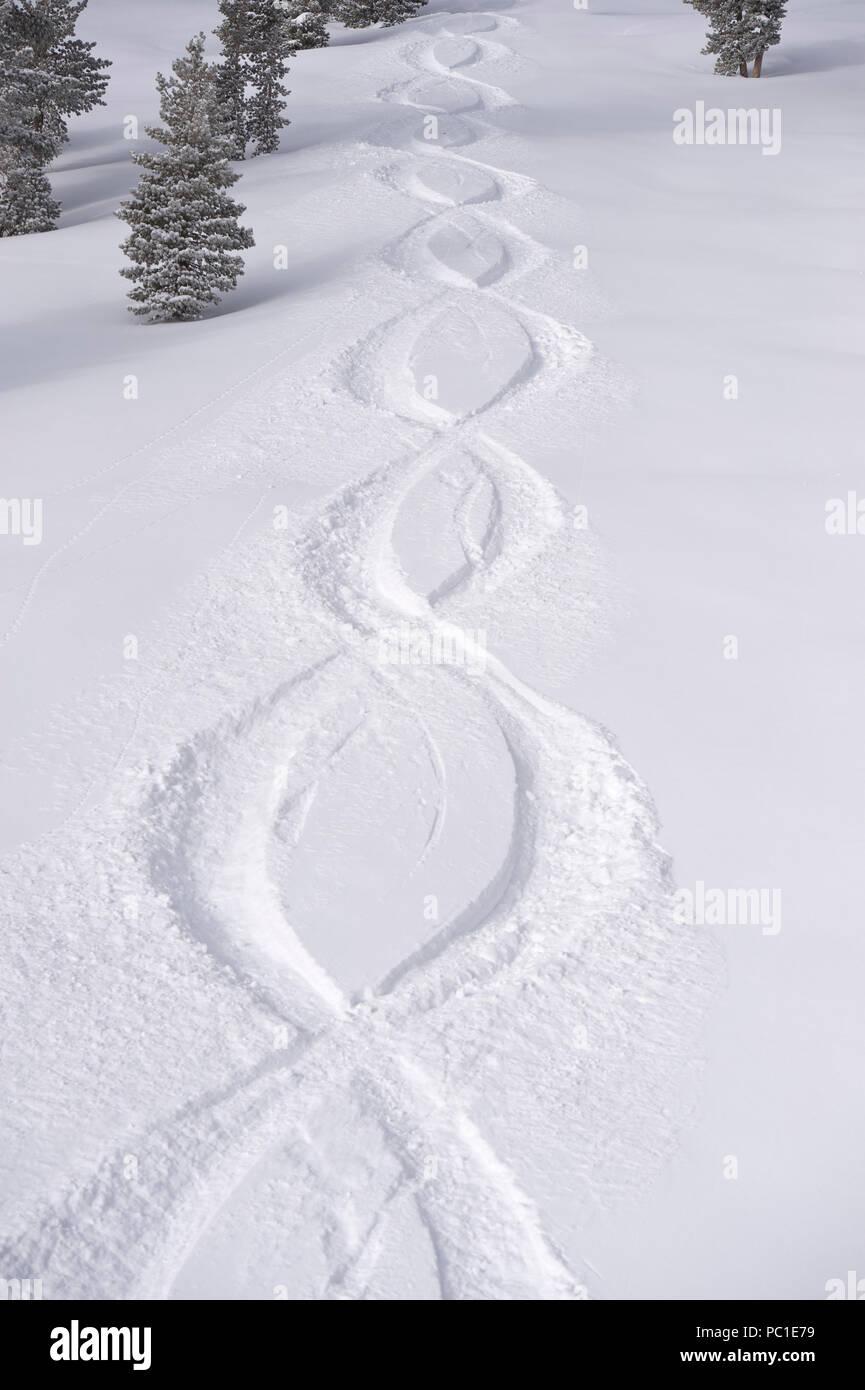 Powder 8 tracks at Mt. Rose Ski Tahoe in fresh snow Stock Photo