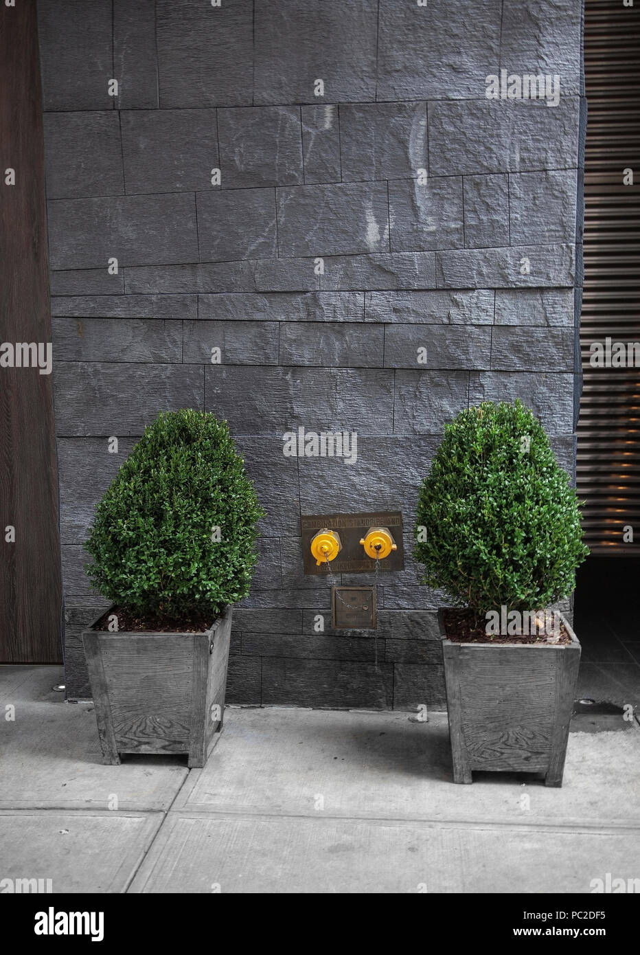 Two small trees in a pot and a Hotel entrance in New York City Center, USA Stock Photo