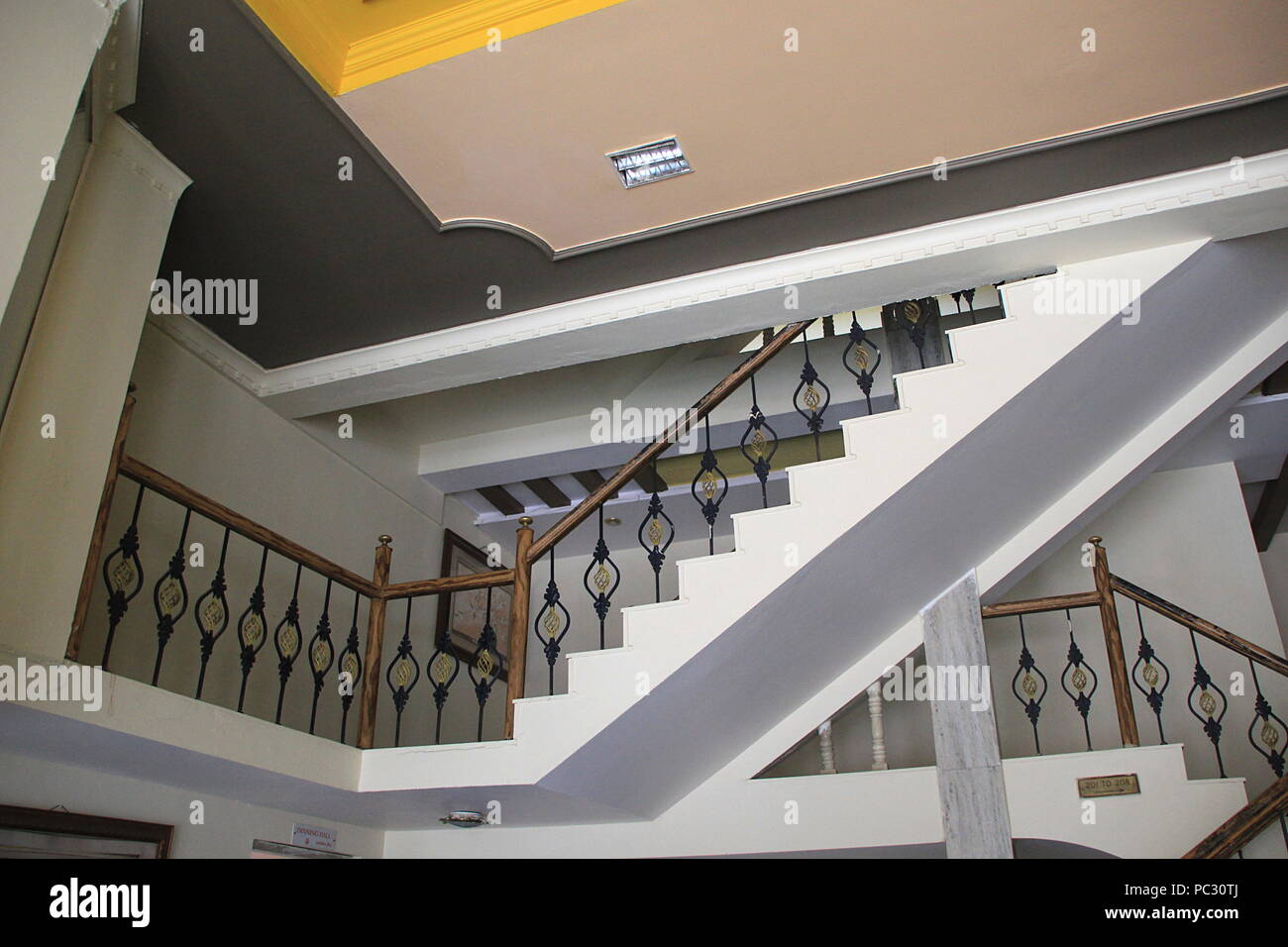 Beautiful staircase with decorative railings and painted roof of modern house