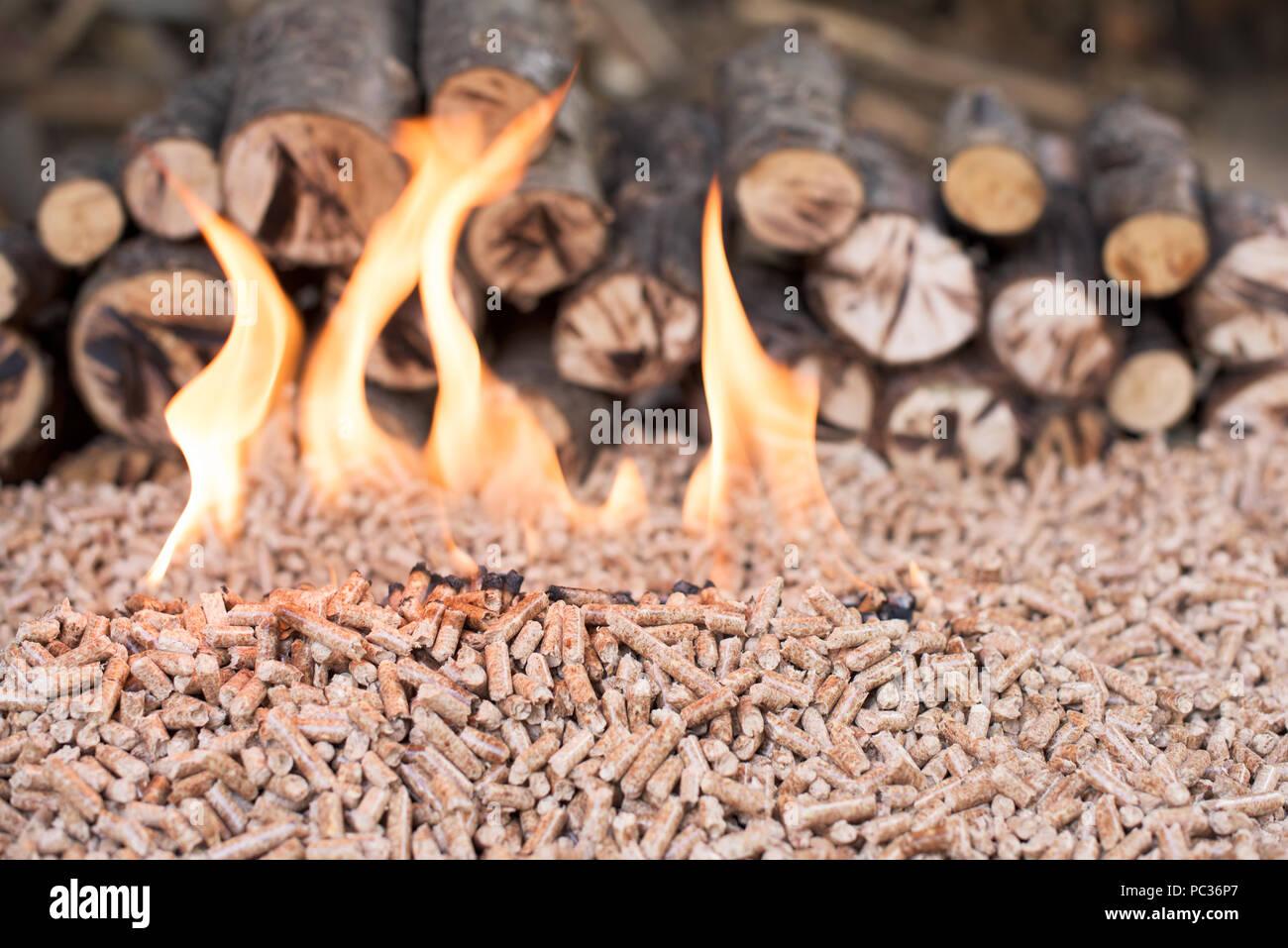 Pile of Oak wooden pellets in flames - Stock Image