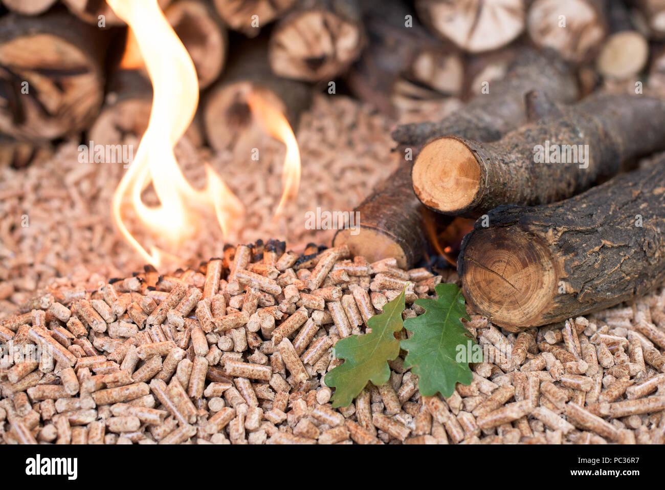 Oak wood and oak pellets in flamen - Stock Image