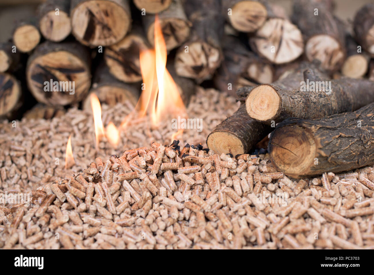 Pile of oak pellets and wood in flames - Stock Image