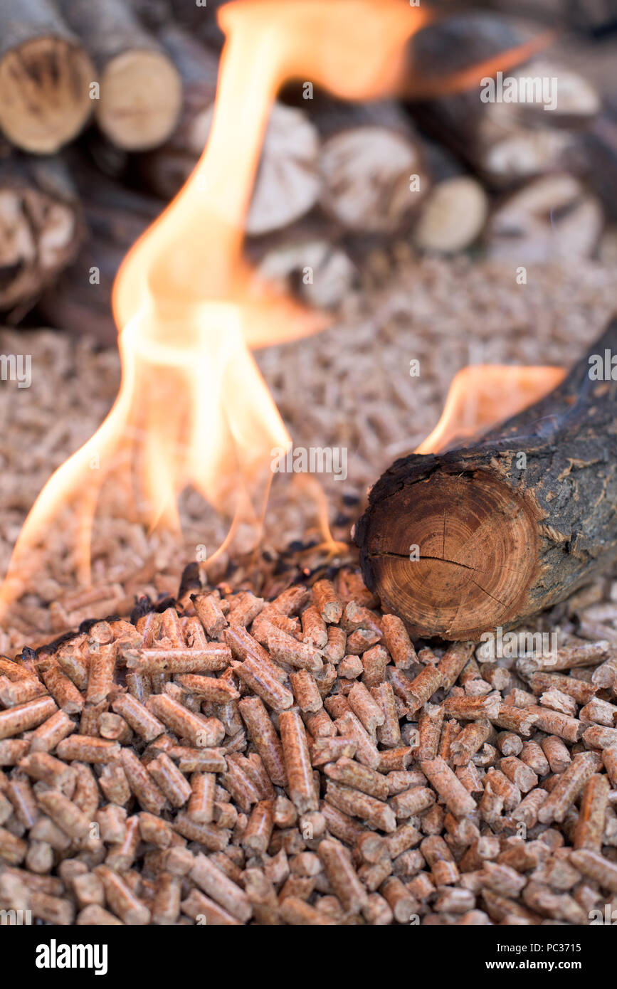 Wooden biomass in flames - close up - Stock Image