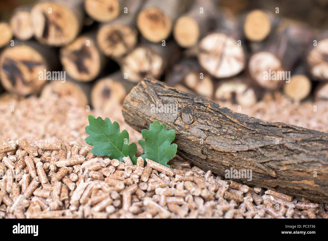 Pile of Oak biomass - pellets, wood, leaf - Stock Image