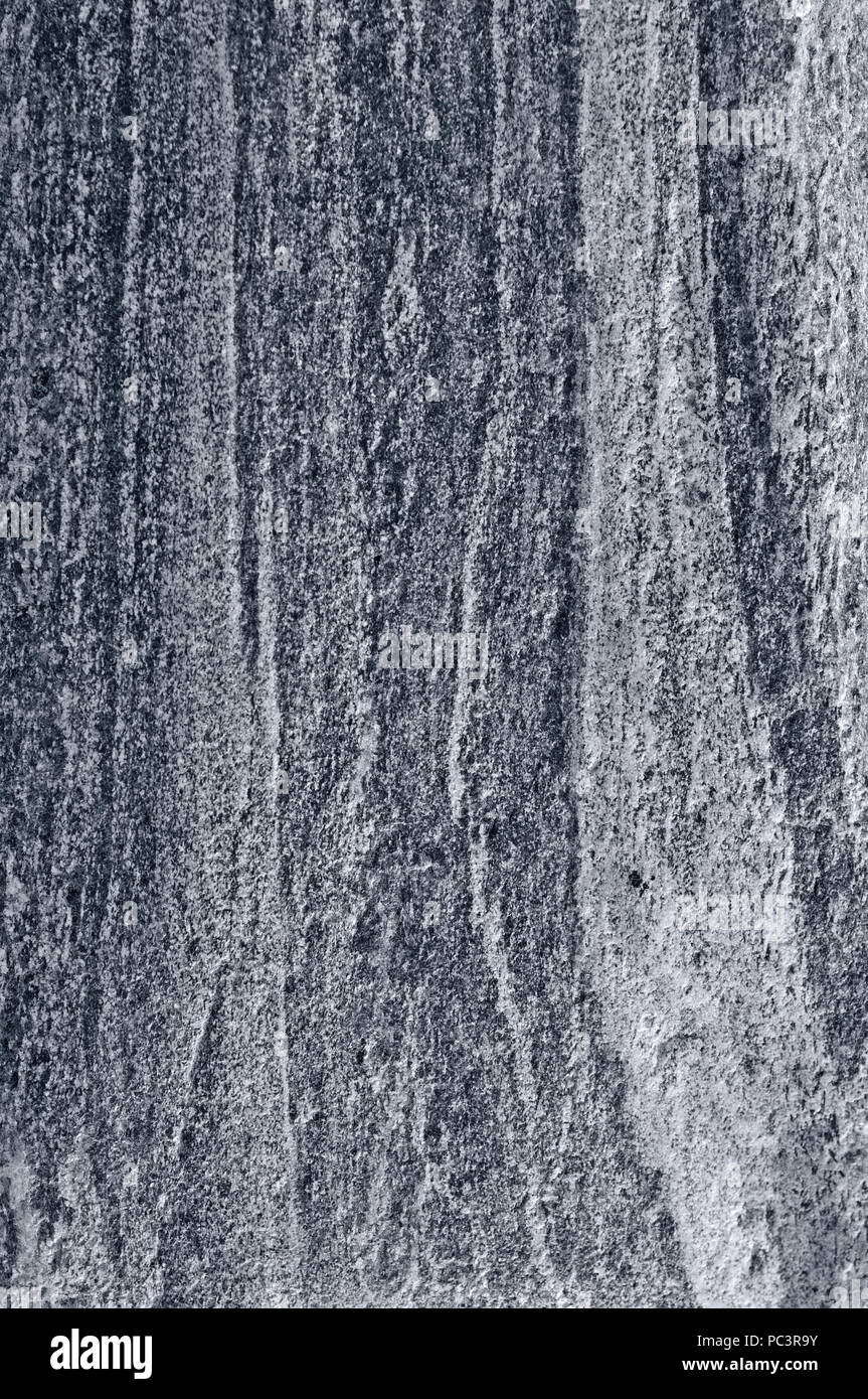 Migmatitic gneiss migmatite rock bands pattern, grey light dark banded granite texture macro closeup, large detailed textured silver gray vertical Stock Photo