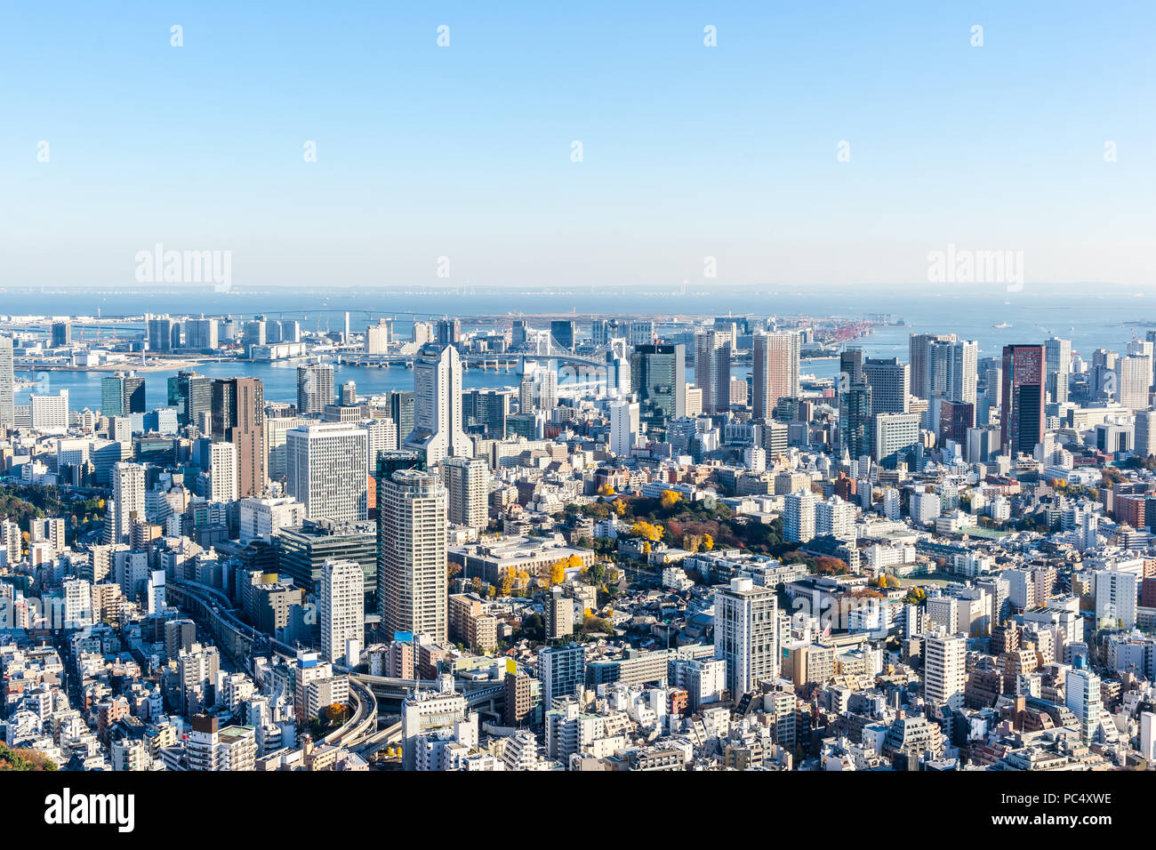 Asia Business concept for real estate and corporate construction - panoramic modern city skyline bird eye aerial view of Odaiba & Tokyo Metropolitan E - Stock Image