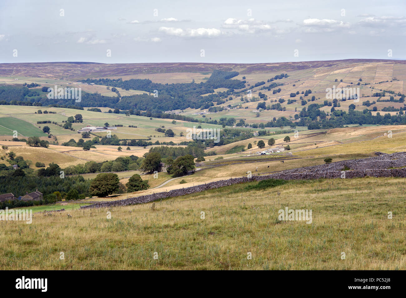 Nidderdale is a major dale or open valley in the Yorkshire Dales. It is an Area of Outstanding Natural Beauty. - Stock Image
