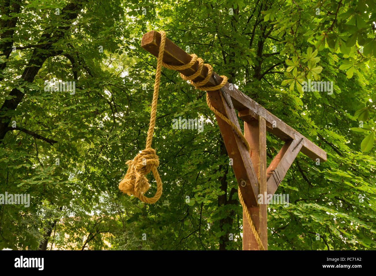No person, medieval gallows, gibbet, halter with a noose and green vegetation background - Stock Image
