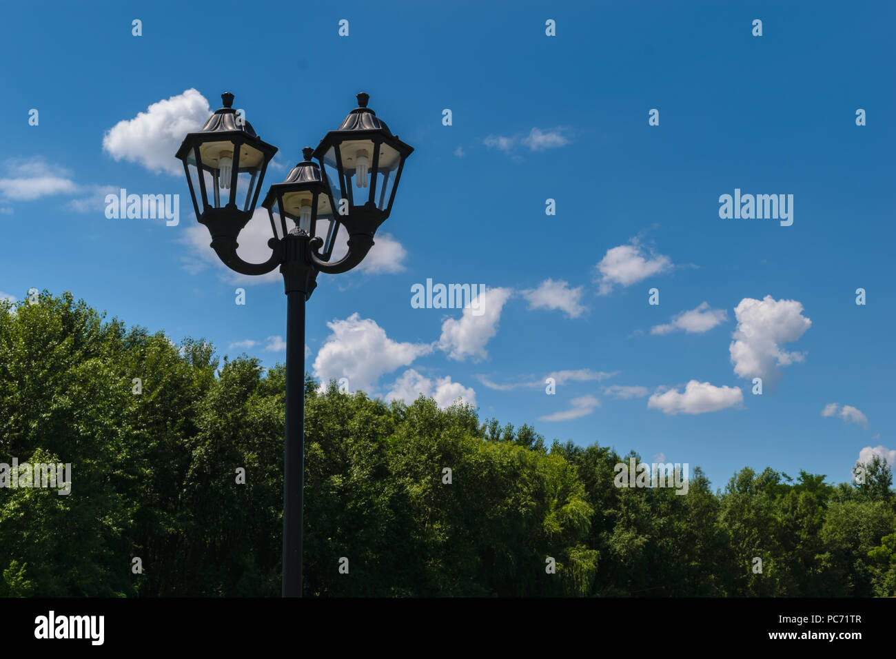 exterior street post light fixture with energy saving CCFL bulbs. Green trees in the background. - Stock Image