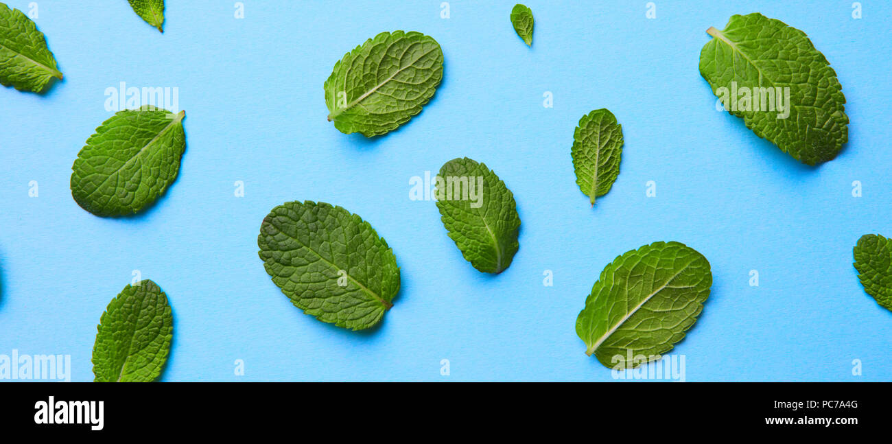 mint blooms - Stock Image