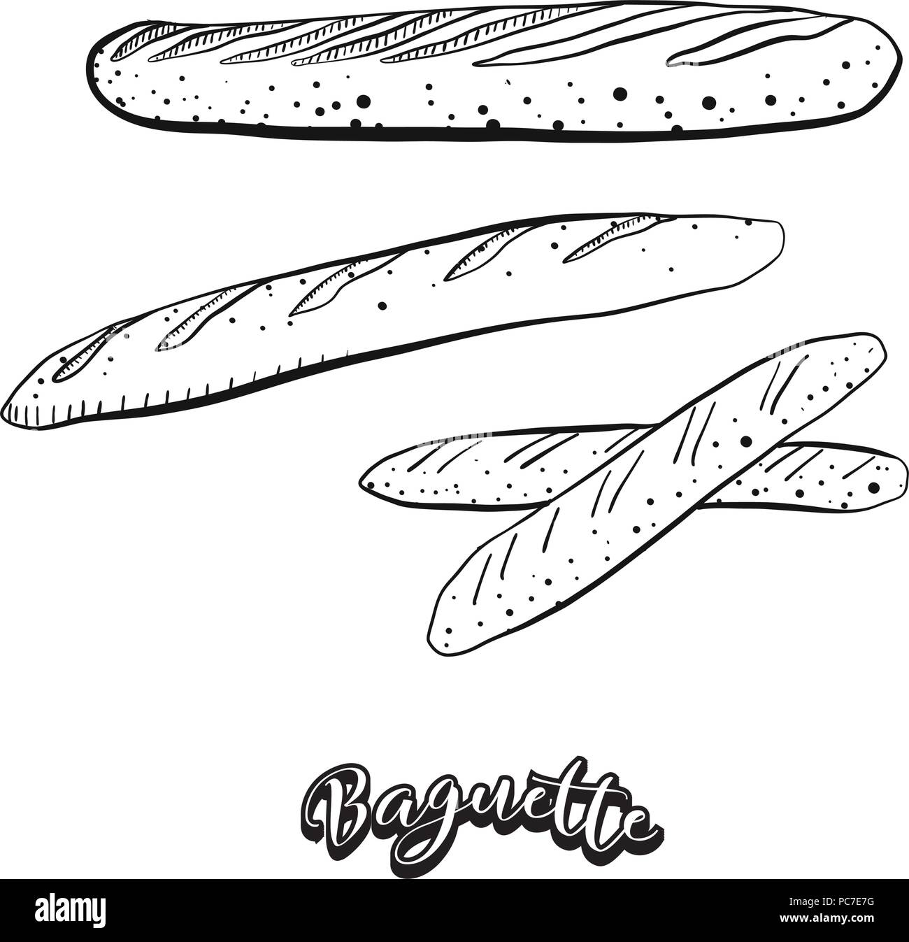 Hand Drawn Sketch Of Baguette Food Vector Drawing Yeast Bread Usually Known In France Illustration Series
