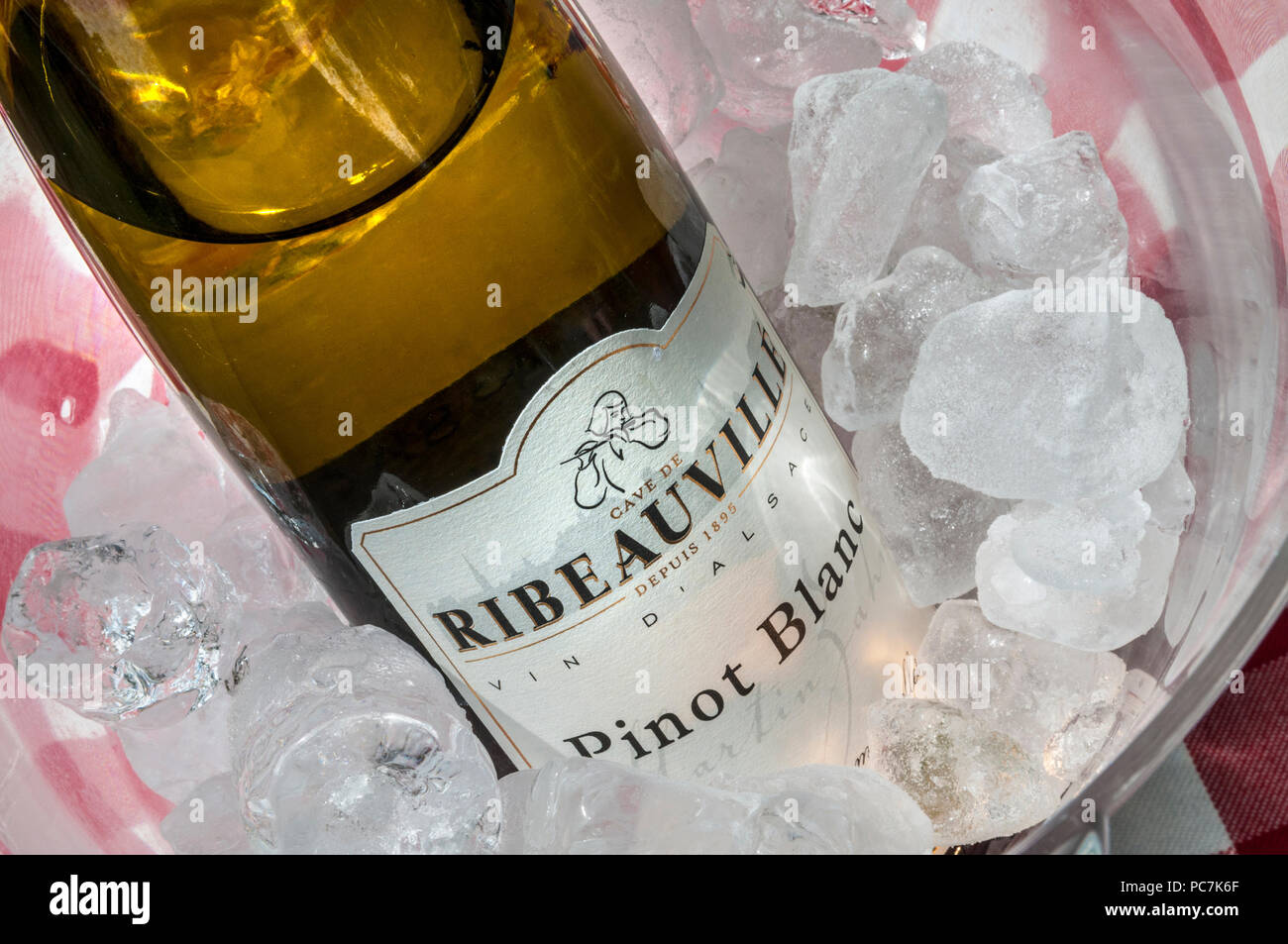 Pinot Blanc white wine bottle chilling in wine cooler Cave de Ribeauville Alsace France - Stock Image