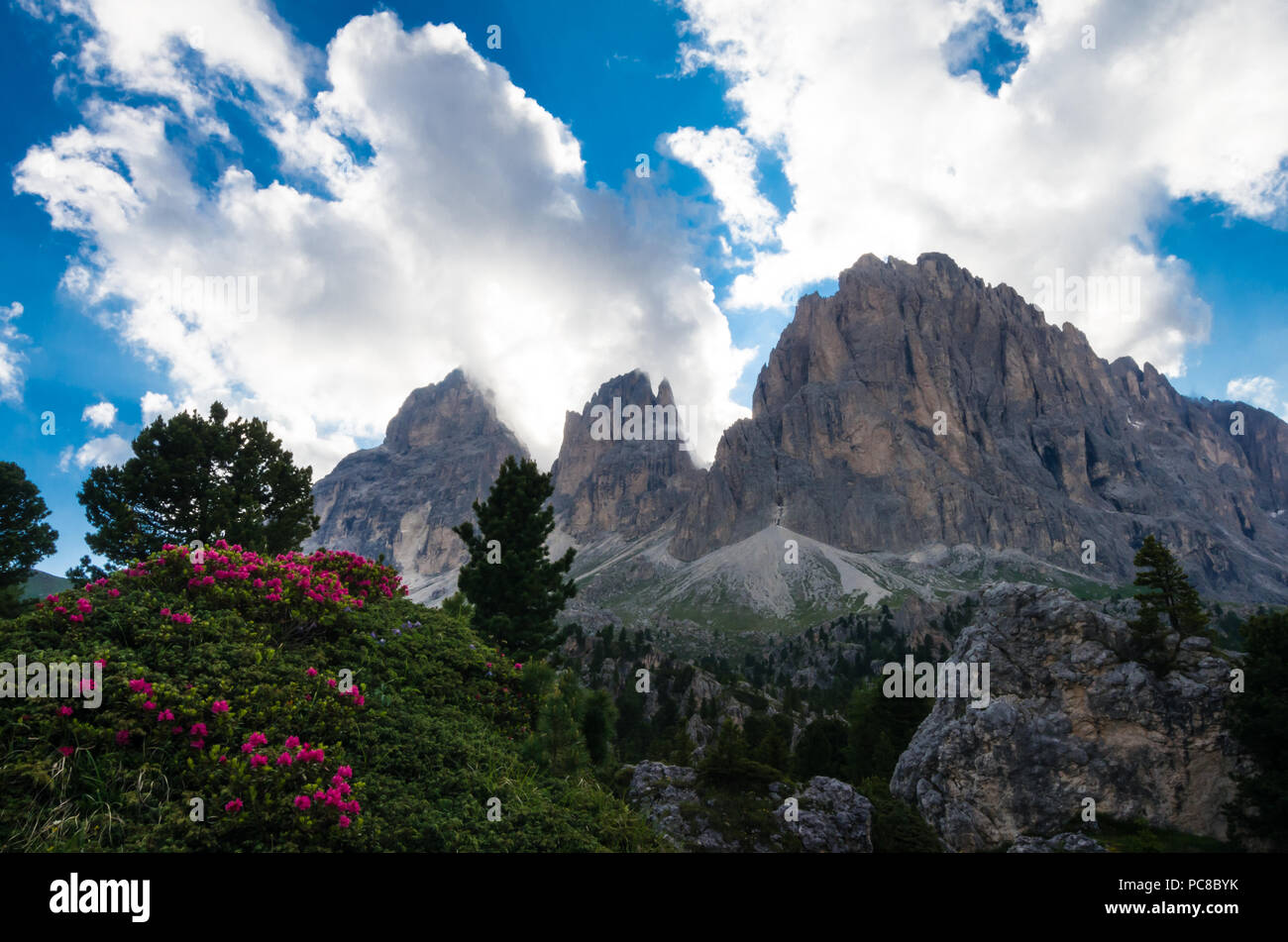 Sassolungo and Sassopiatto mountains, Italy. Photo from a hiking path in Dolomites, Dolomiti, Sella Alto Adige, South Tyrol - Stock Image