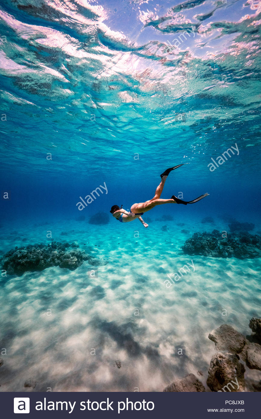 A Woman Snorkeling At Electric Beach In Oahu Stock Photo