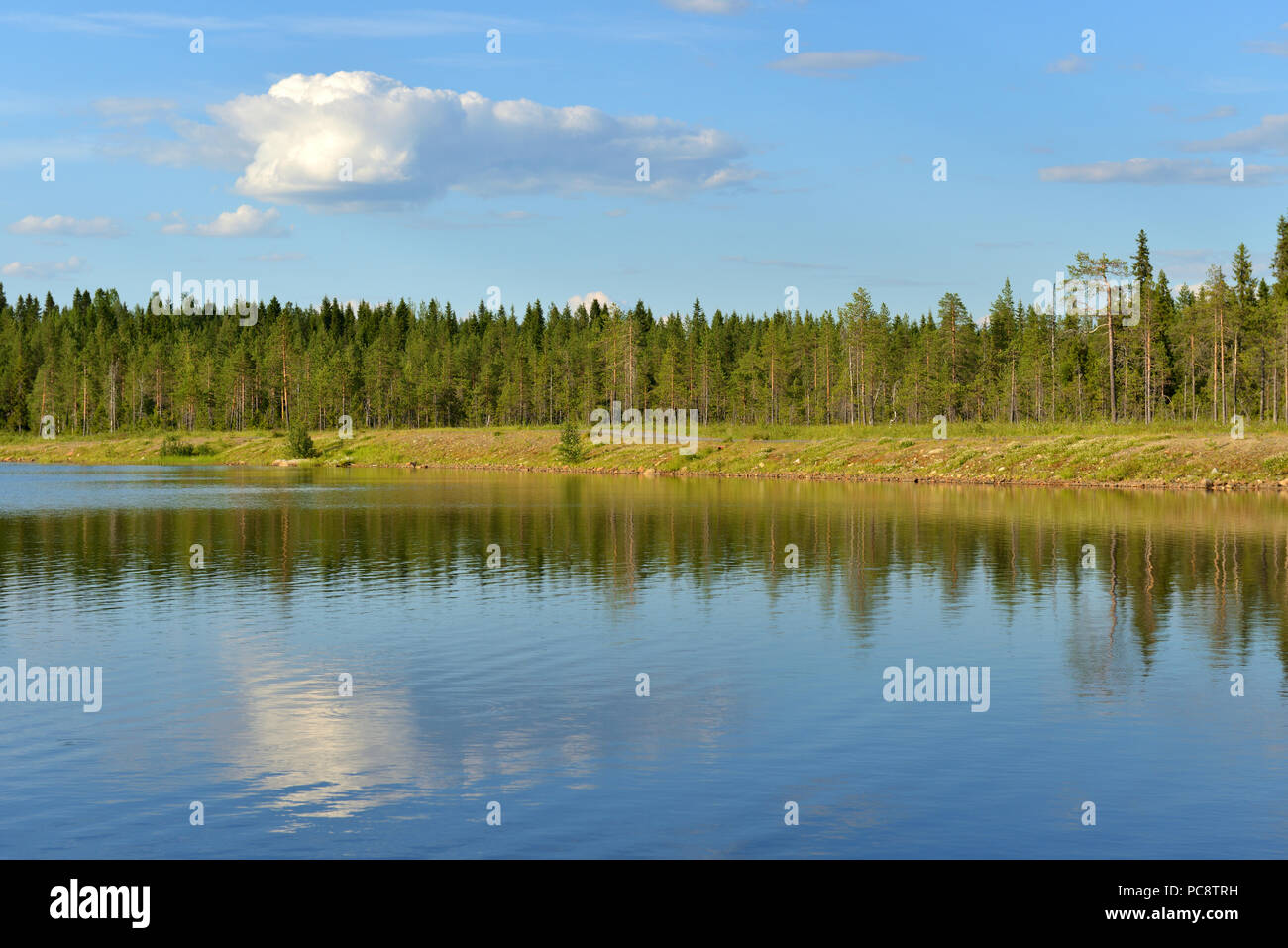 Summer landscape. Forest lake with reflection of cloud in Finnish Lapland - Stock Image