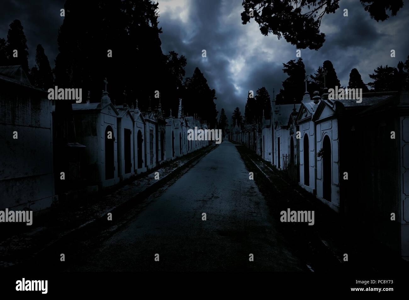 Twilight dark background  Street of an old european cemetery