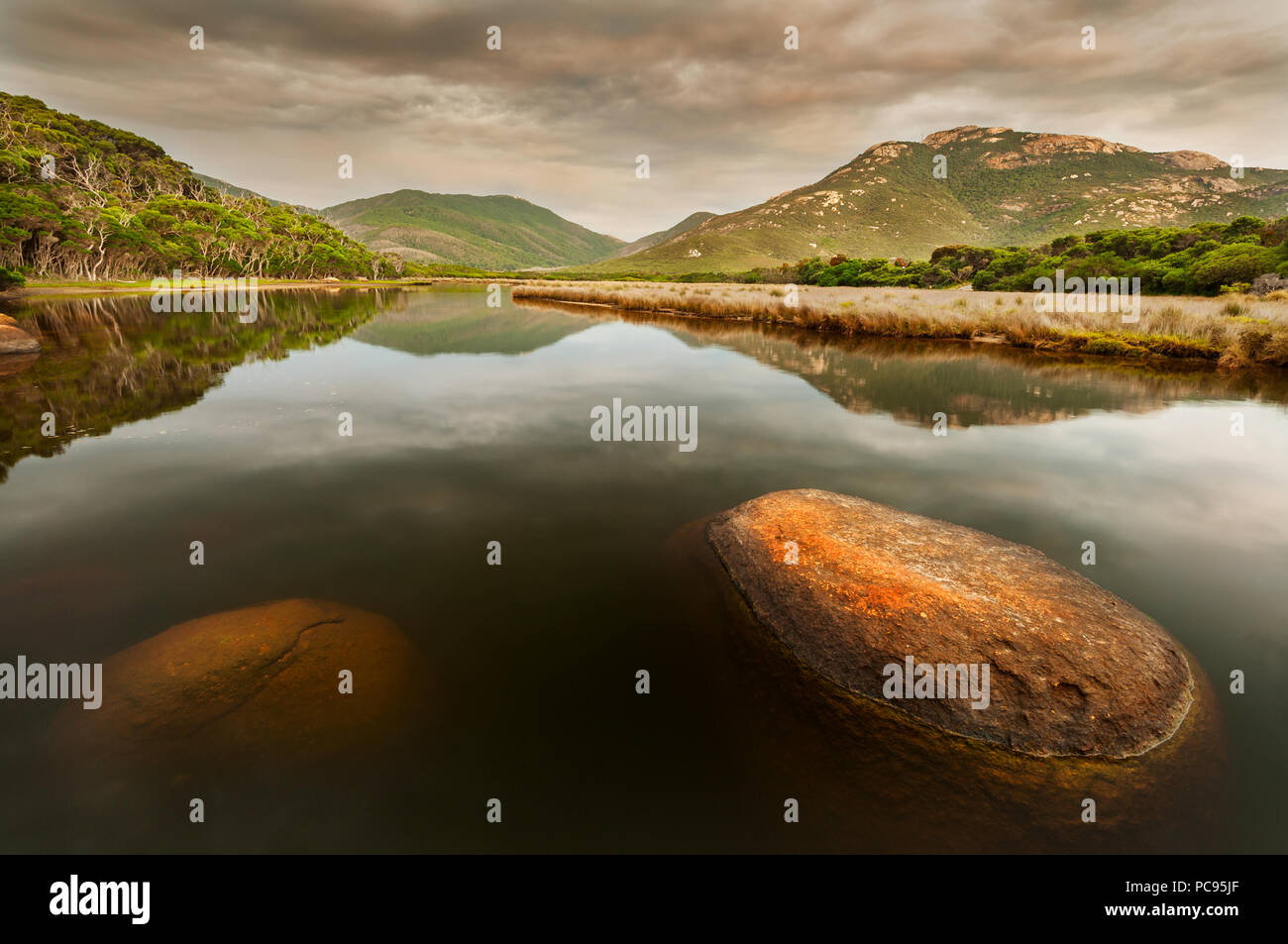 Colourful lichen-covered rocks at Tidal River in Wilsons Promontory National Park. - Stock Image