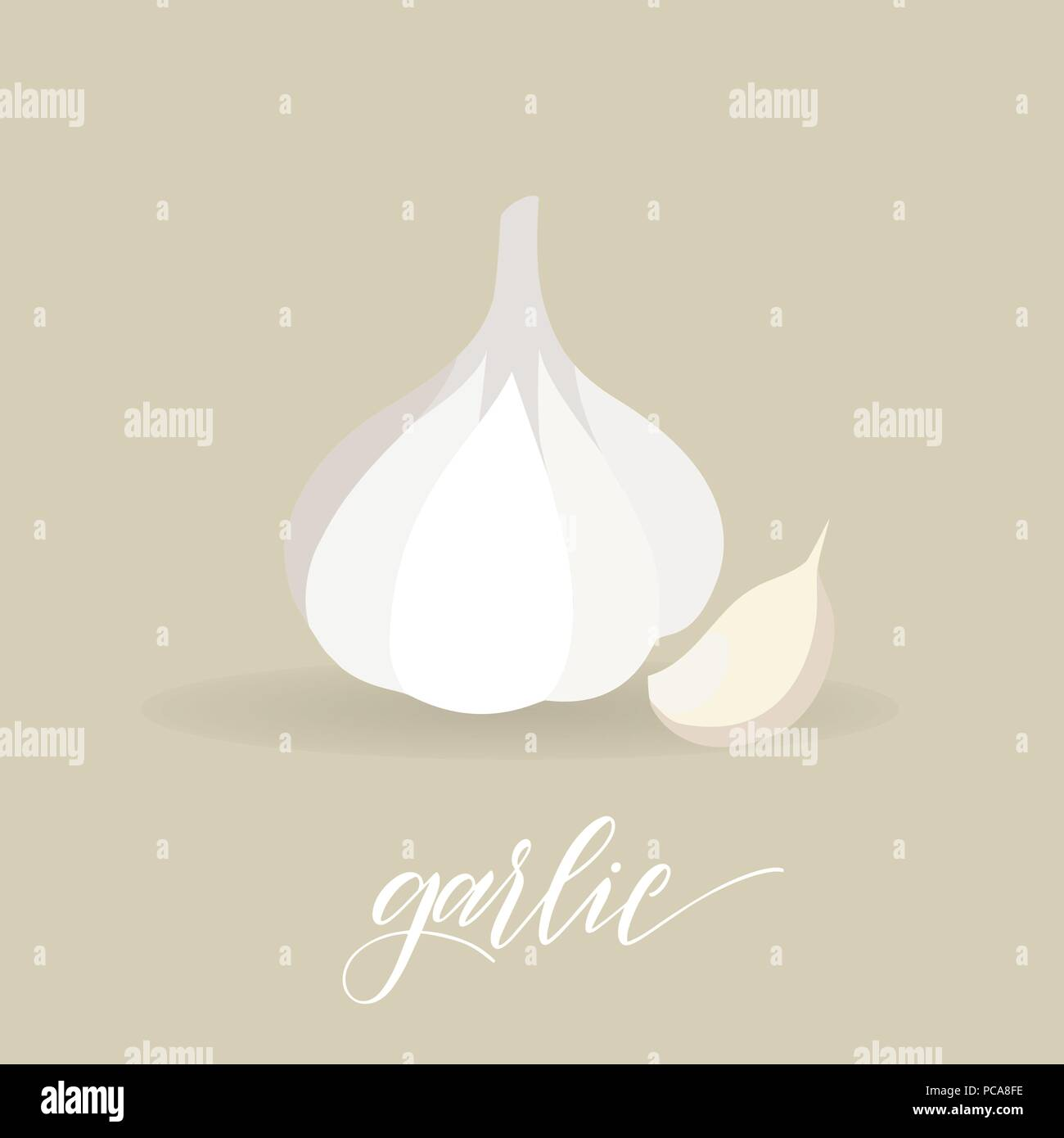Garlic in flat style. Hand written text. Vector - Stock Vector