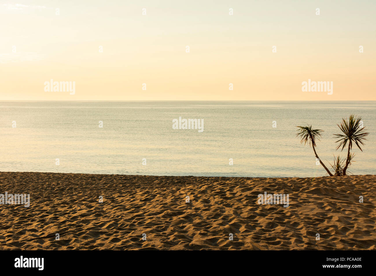 Beach of Le Barcares,  Pyrenees-Orientales Department, Occitanie, France - Stock Image