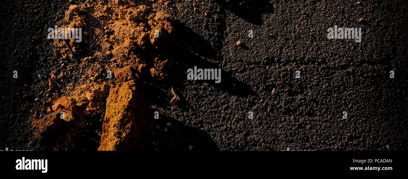 surface of the asphalt and the remains of the destroyed brick are illuminated by sunlight. Web banner. Element of design. - Stock Image
