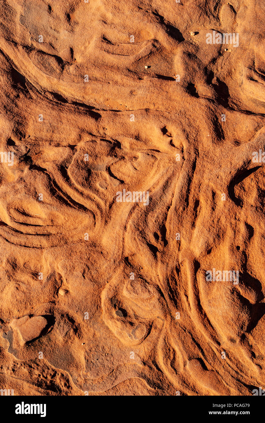 Palm Valley, Finke Gorge National Park in Northern Territory, Australia Stock Photo