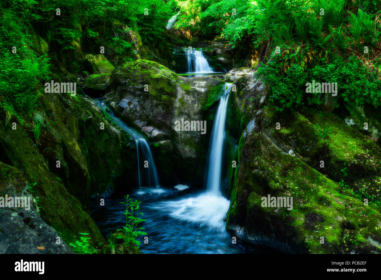Ingleton waterfalls, Yorkshire Dales National Park - Stock Image