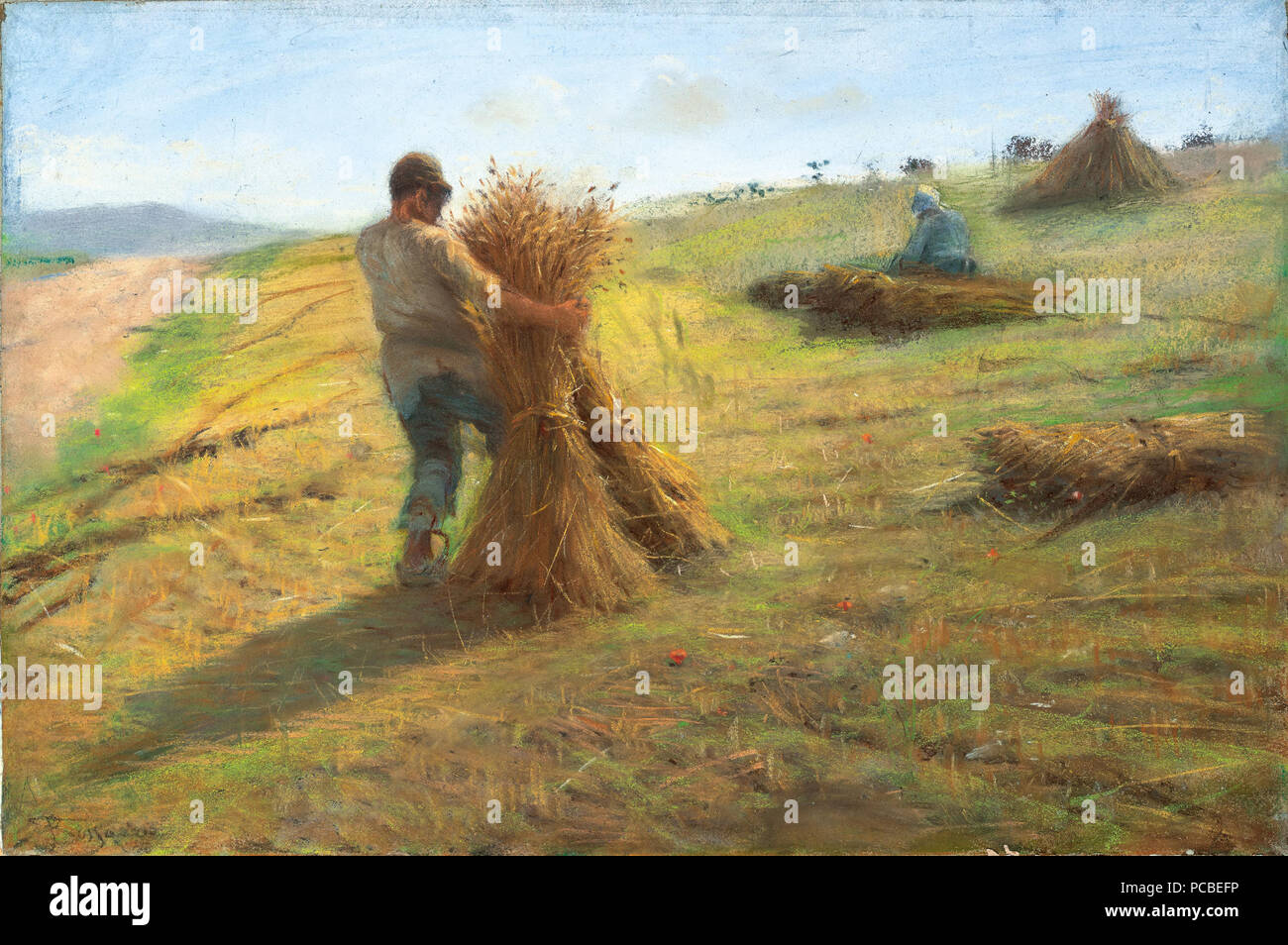 33 Federigo Rossano - Grain Harvest Stock Photo