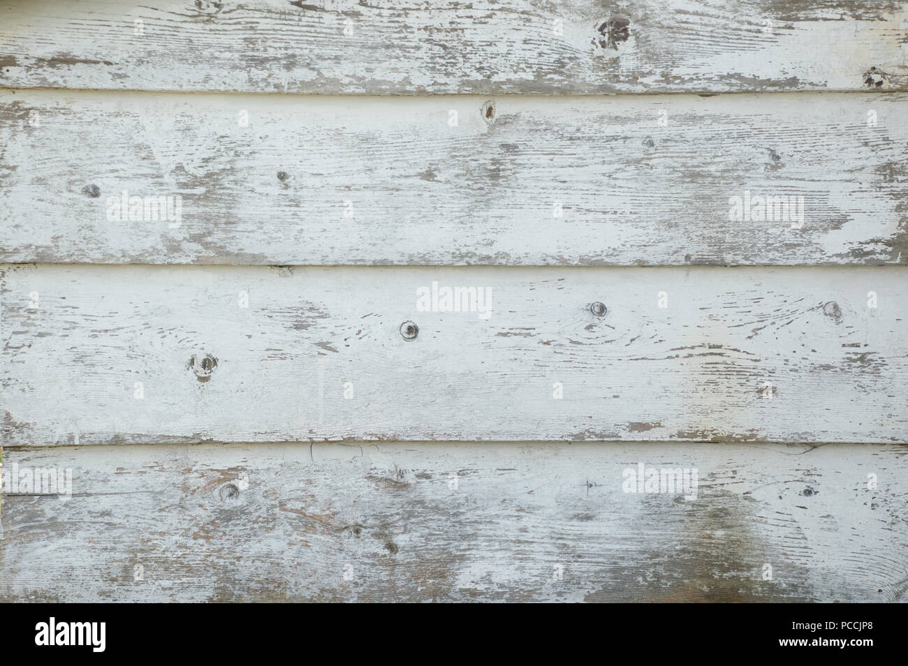 Closeup of grunge white painted boards that are distressed and worn background - Stock Image