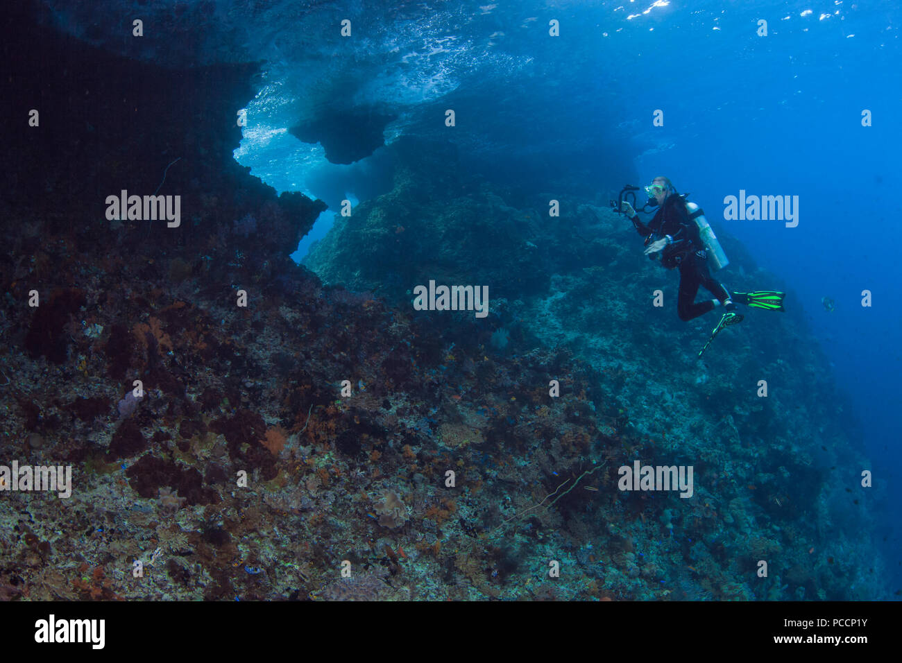 Female scuba diver with video camera photographs the backside of Boo Windows. Raja Ampat, Indonesia. Stock Photo