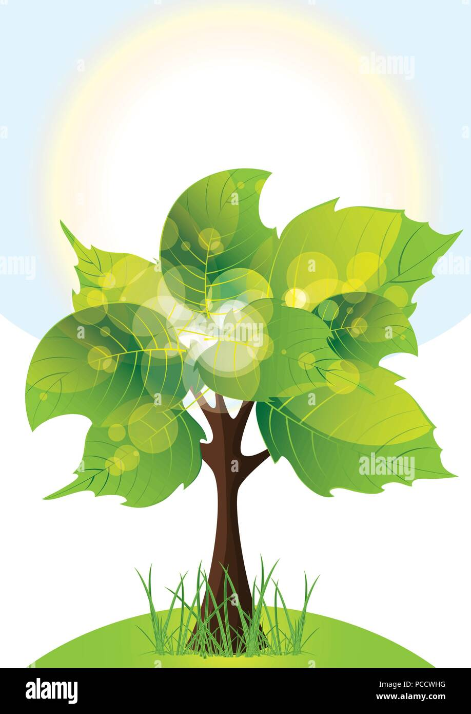 tree with lush green foliage, sunny day, vector illustration - Stock Vector