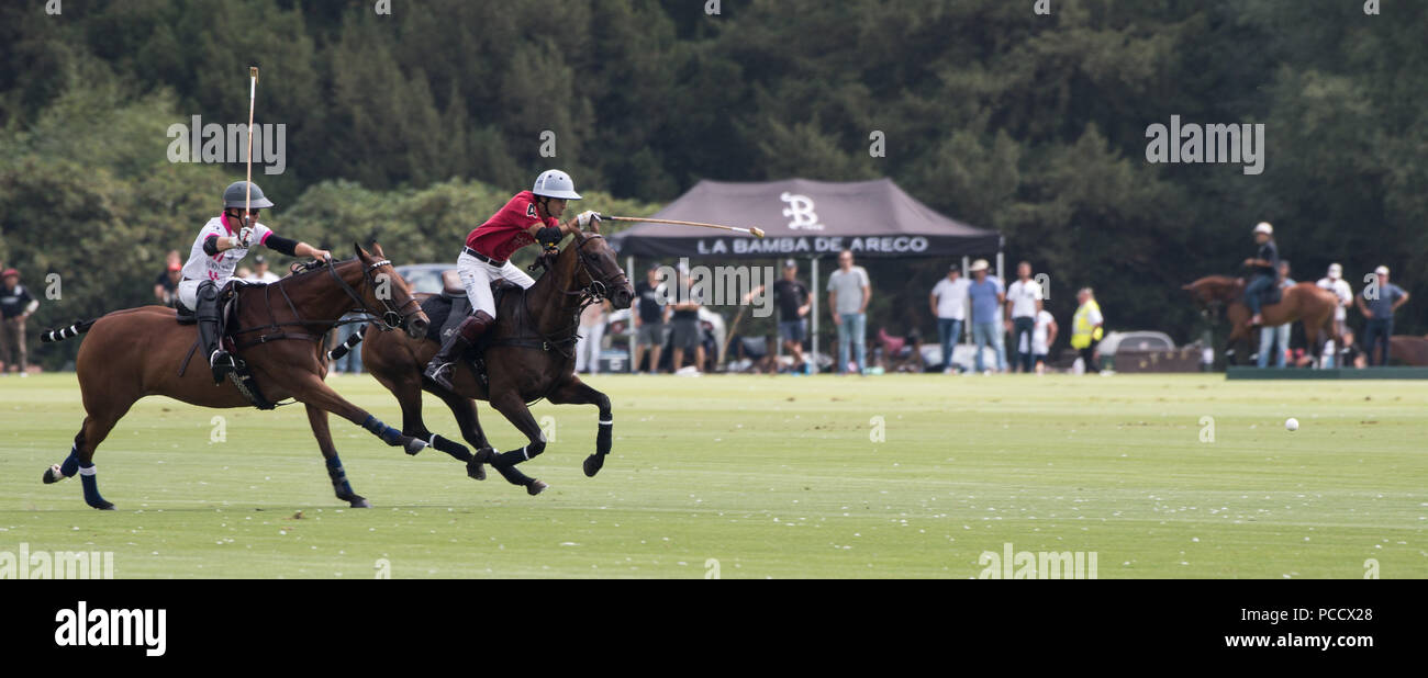 action from the King Power Gold Cup Final, Cowdray, West Sussex, UK - Stock Image