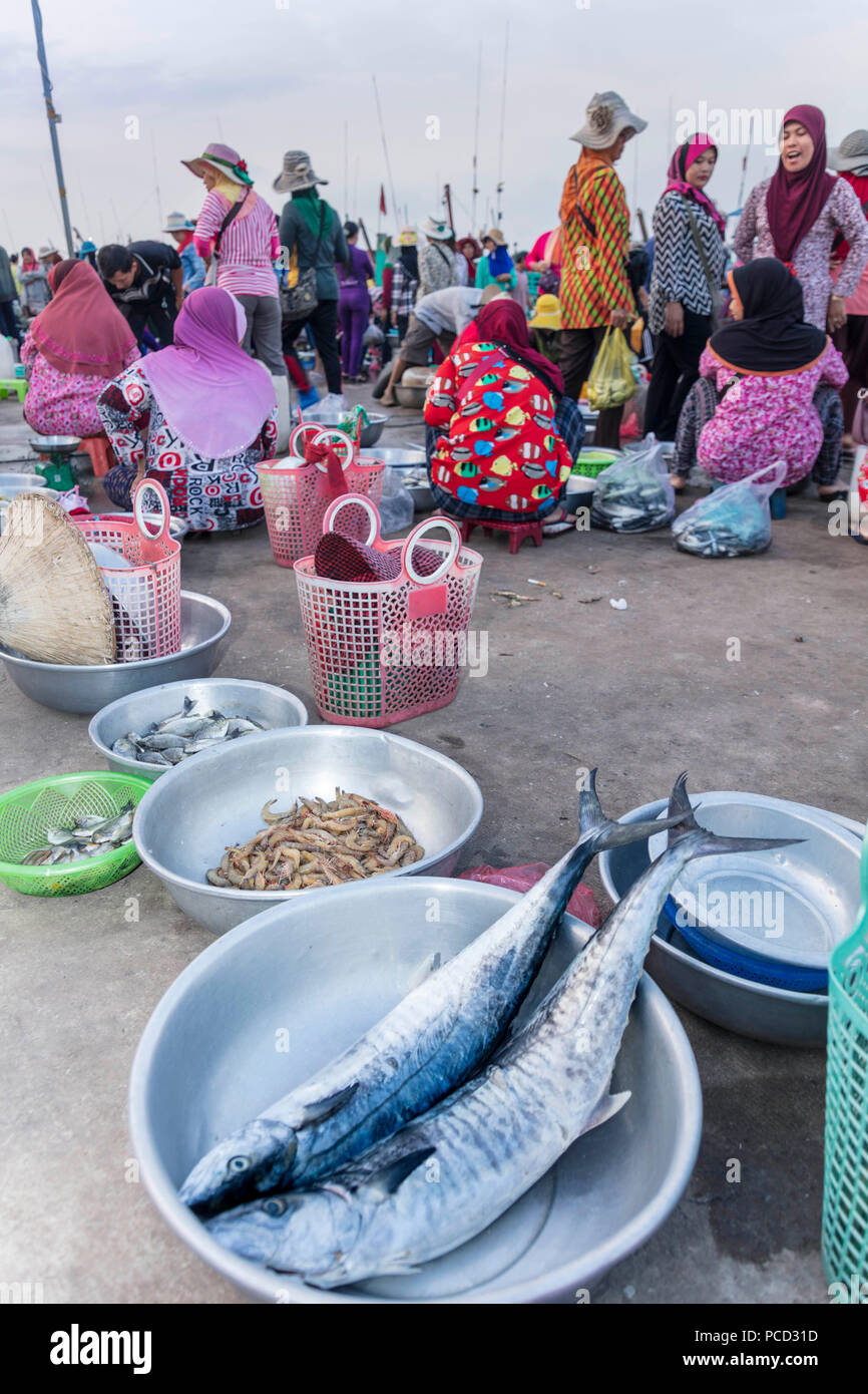 Morning fish market on the banks of the Preaek Tuek Chhu River in Kampot town, Cambodia, Indochina, Southeast Asia, Asia - Stock Image