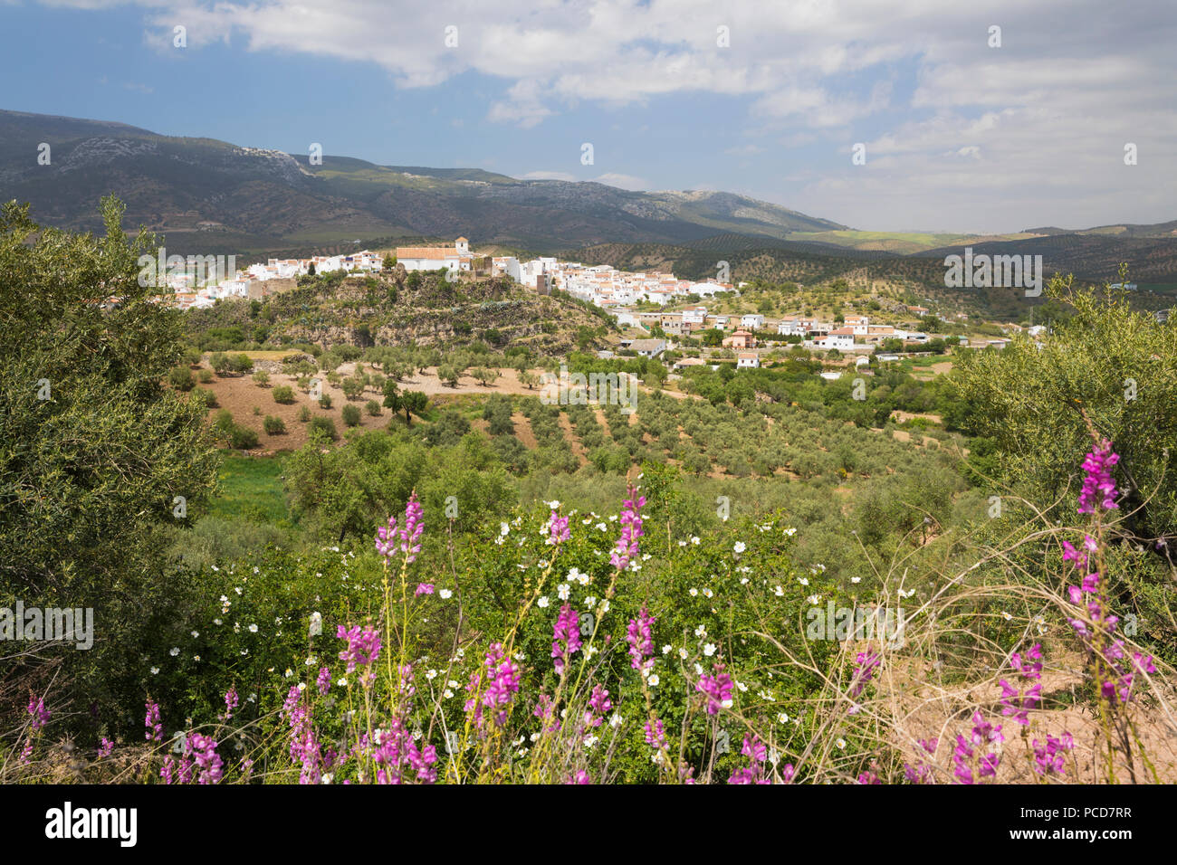 View in spring over the white Andalucian village of El Burgo, Malaga Province, Andalucia, Spain, Europe - Stock Image
