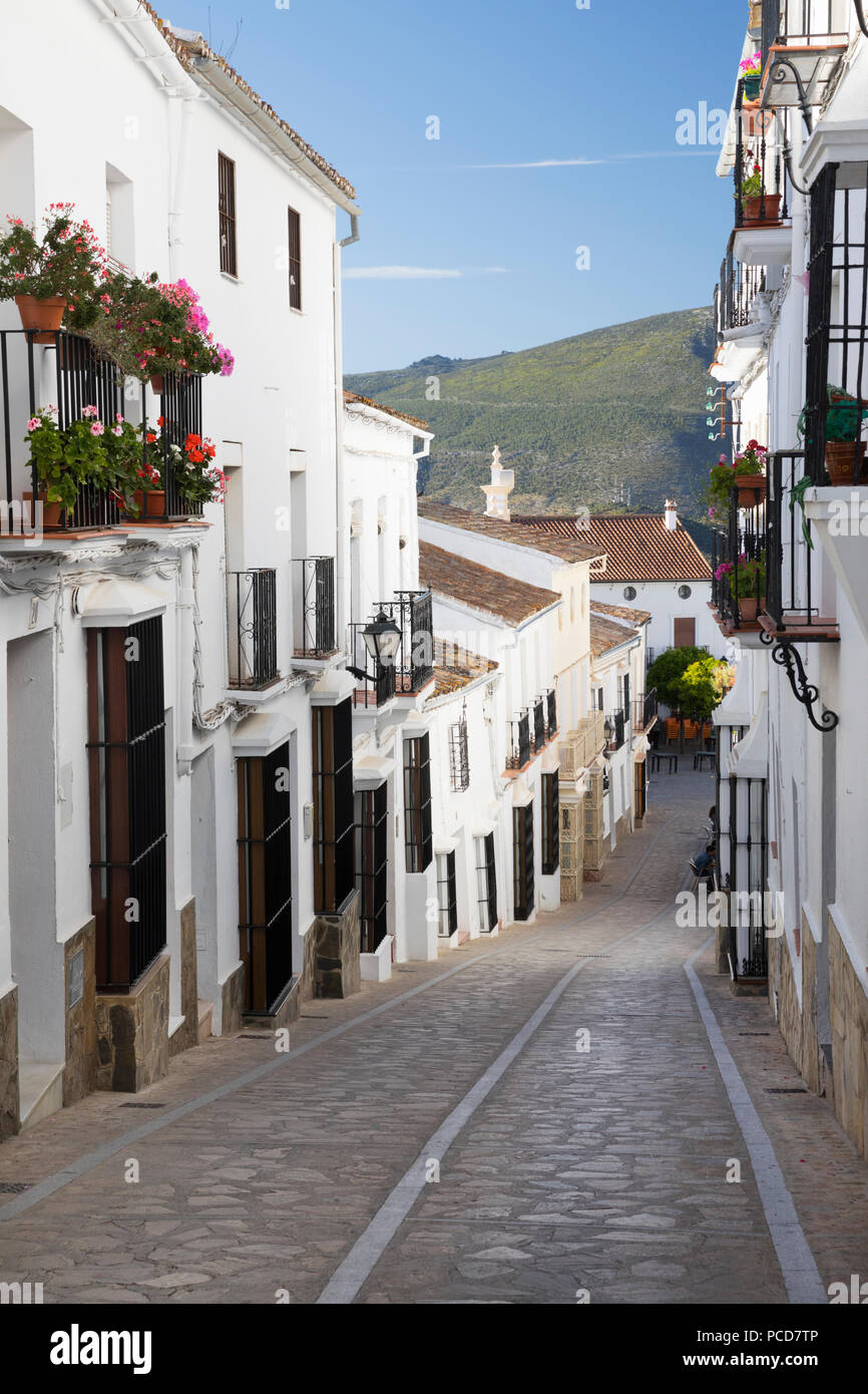 Narrow street in Andalucian white village, Zahara de la Sierra, Sierra de Grazalema Natural Park, Andalucia, Spain, Europe - Stock Image