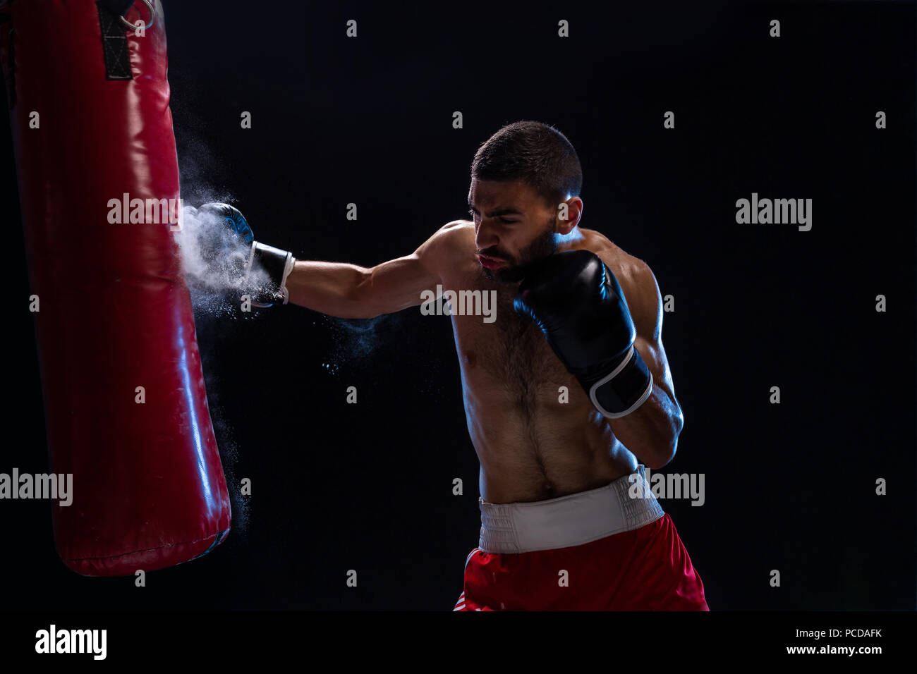 Muscular handsome boxer giving a forceful forward kick during a practise round with a boxing bag. Studio shot on a black background - Stock Image